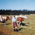 Sarka-sunnuntai: Lapsia, lehmiä ja läskisoosia